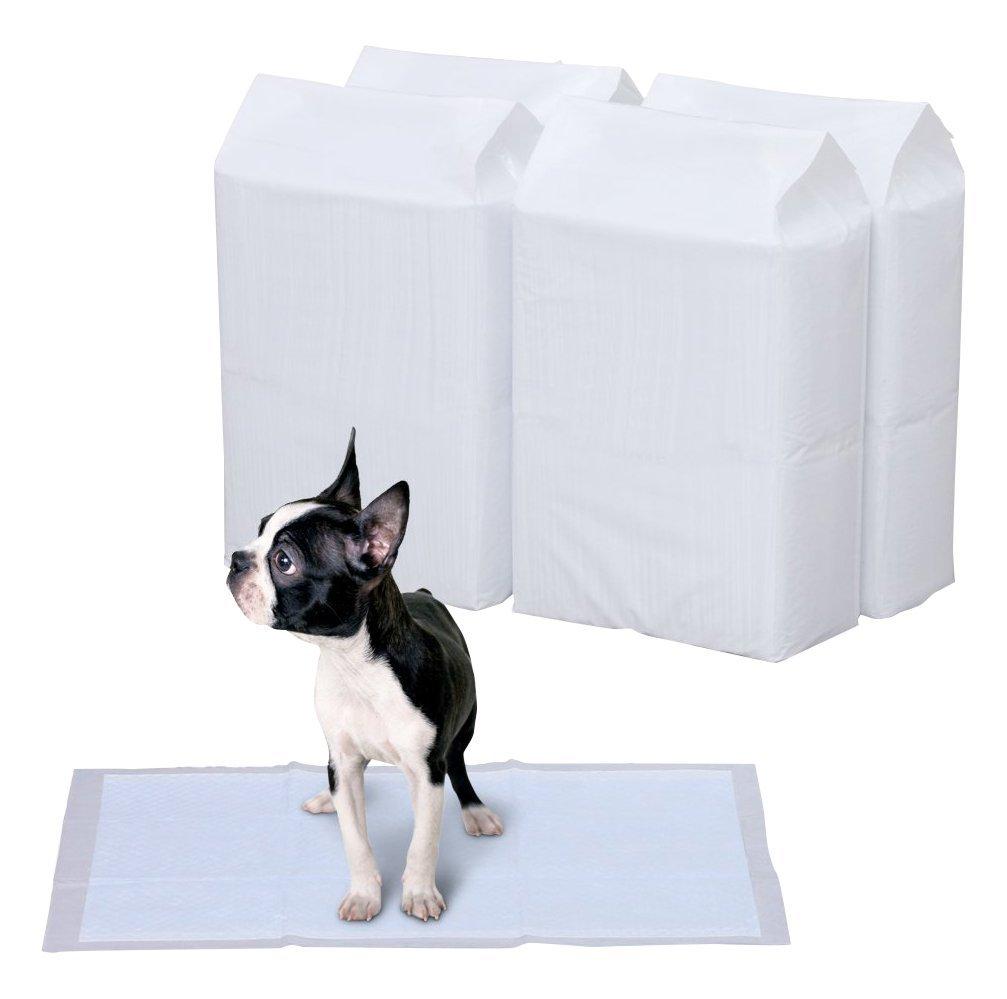 犬用トイレシートのおすすめ4選&選び方【消臭・吸収力で選びたい】