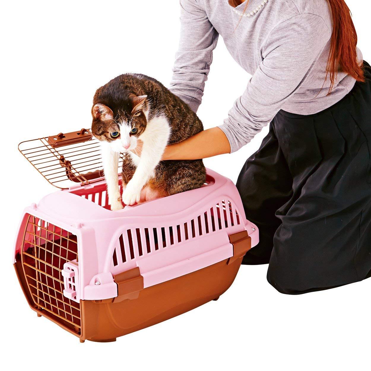 猫キャリー・カートのおすすめ5選!カートタイプや折りたたみ式も