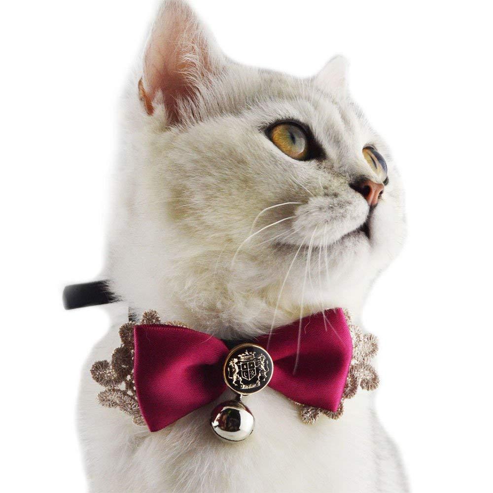 猫用の首輪おすすめ4選!セーフティ機能付きも