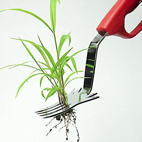 草取りフォークの選び方&おすすめ5選【面倒な雑草の処理に】