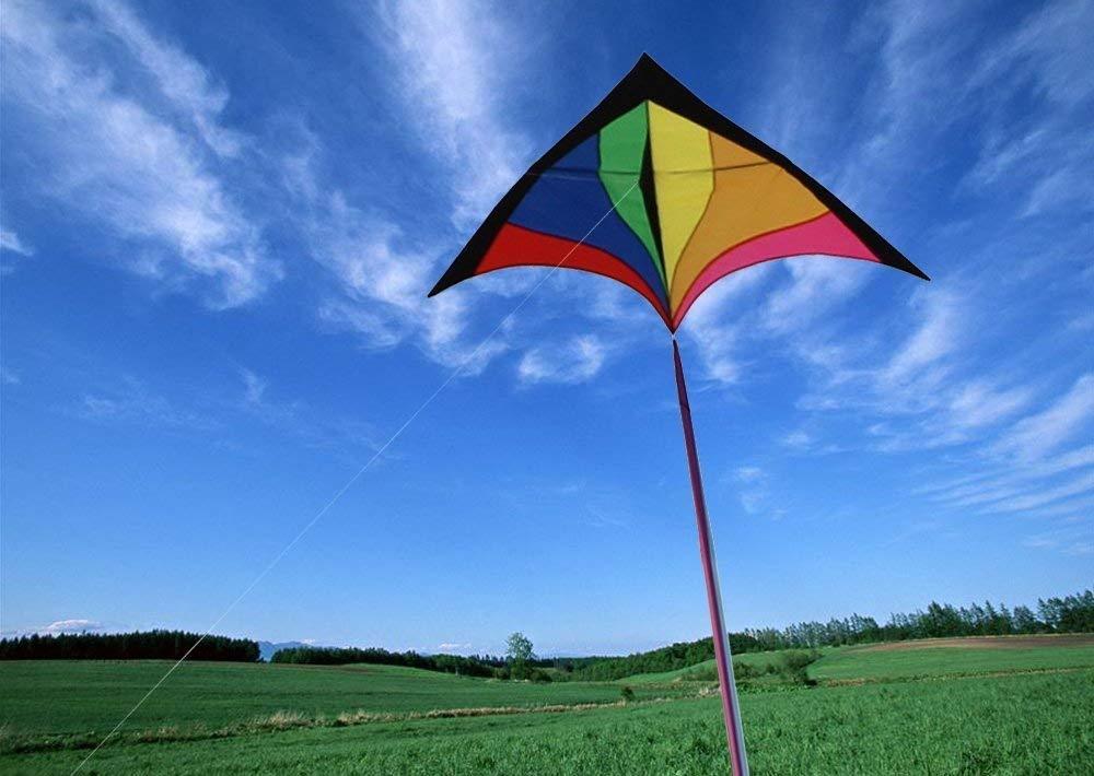 凧・カイトのおすすめ5選!微風で飛ばせるバイオカイトも