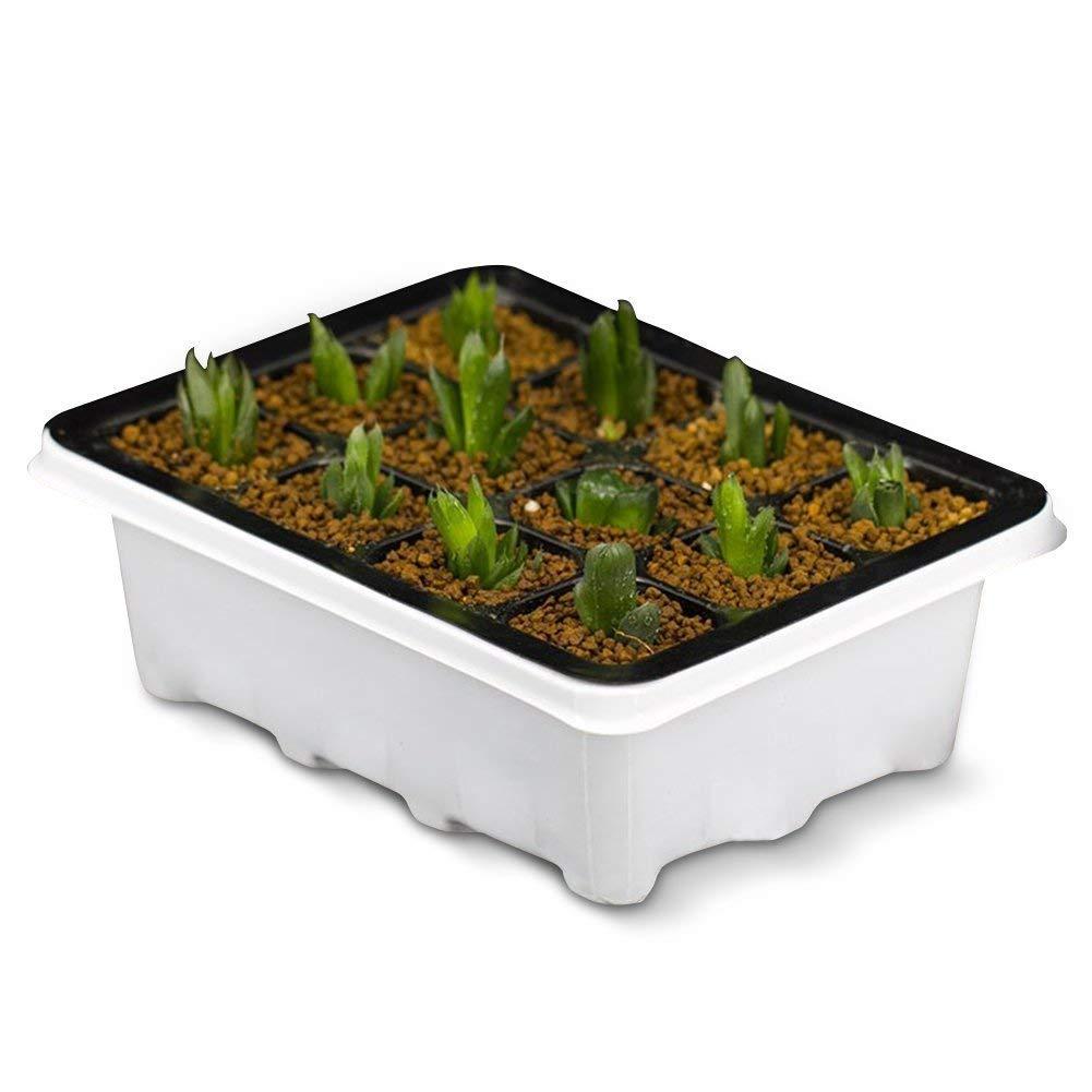 苗箱の選び方&おすすめ3選【植物の種まきと成長管理に】