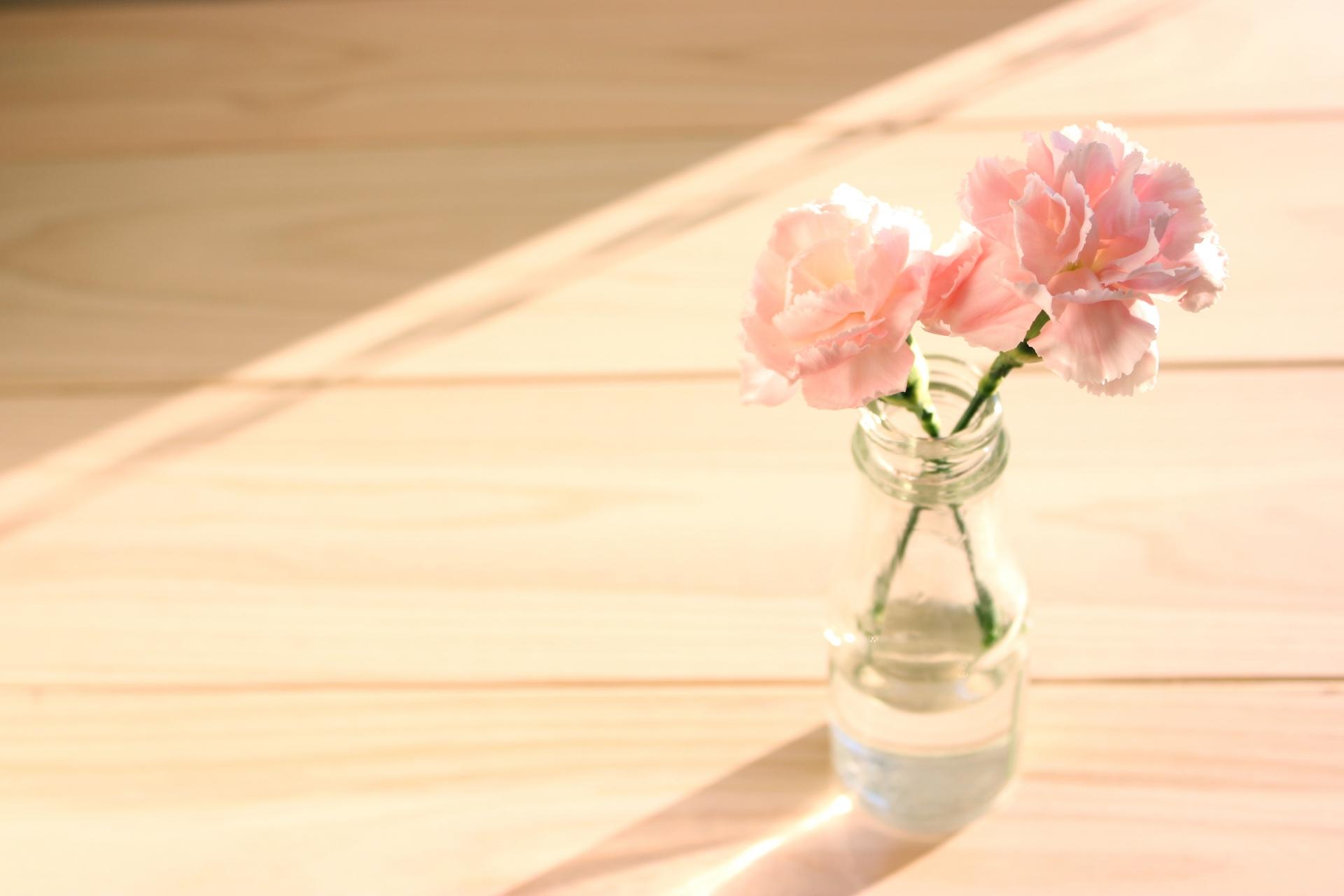 切り花のおすすめ5選&選び方【長持ちさせる方法も】