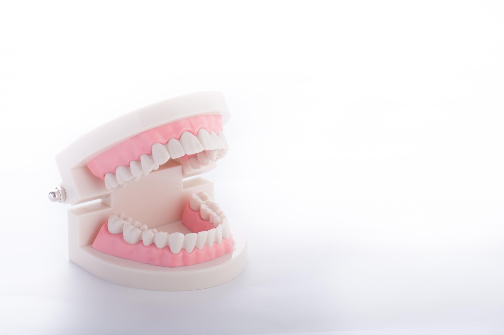 歯ぐきマッサージグッズのおすすめ6選【歯の健康のために】