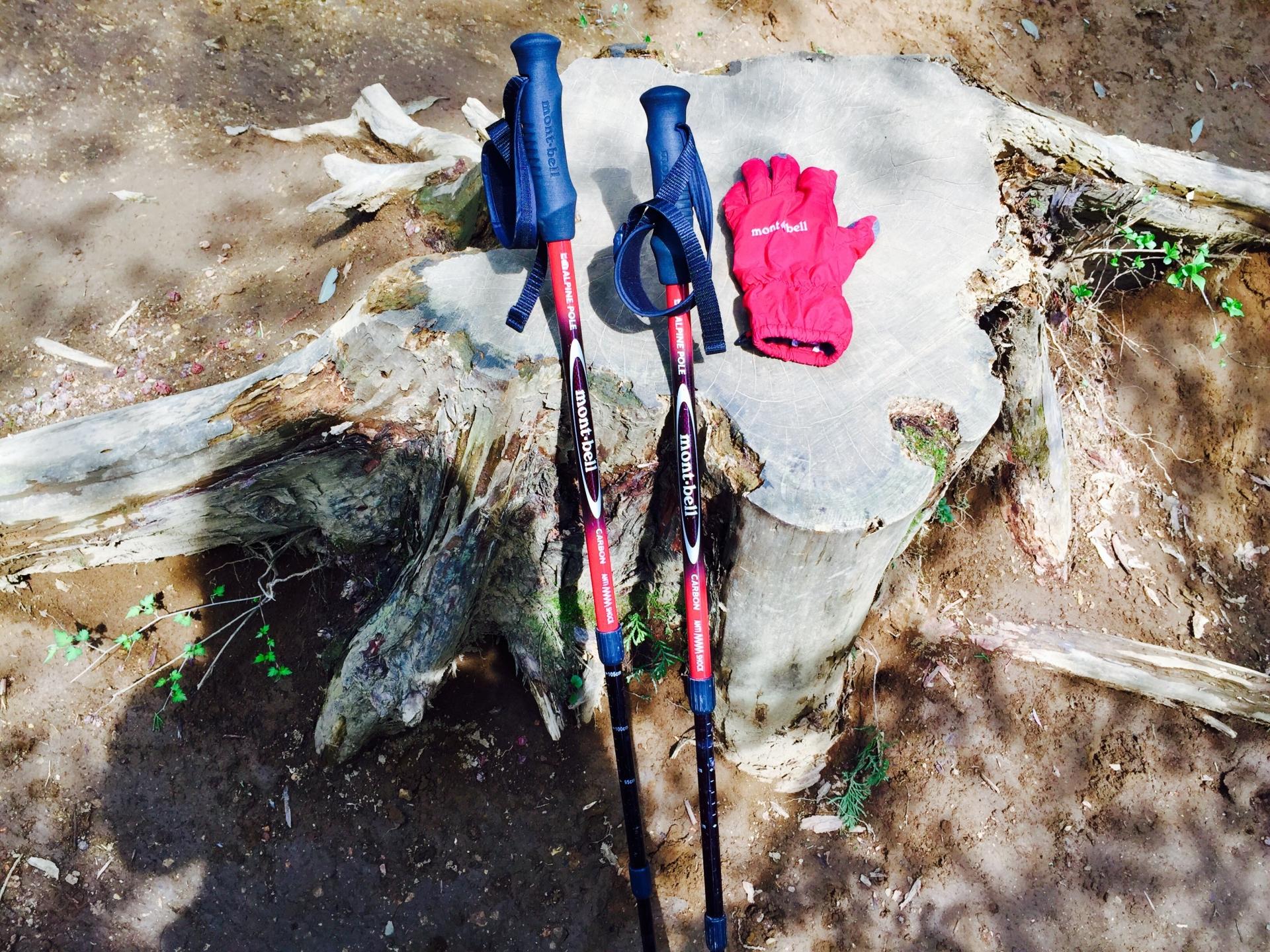 トレッキングポールのおすすめ6選【登山をもっと楽しく】