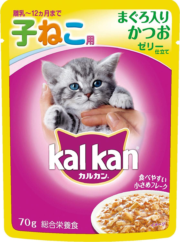 子猫用離乳食のおすすめ8選!ペーストや粉末タイプも