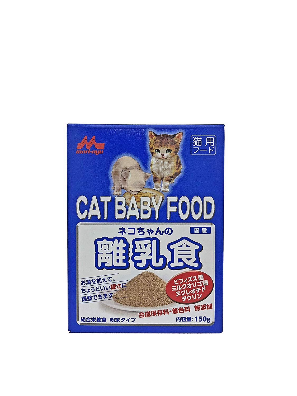 子猫 餌 おすすめ