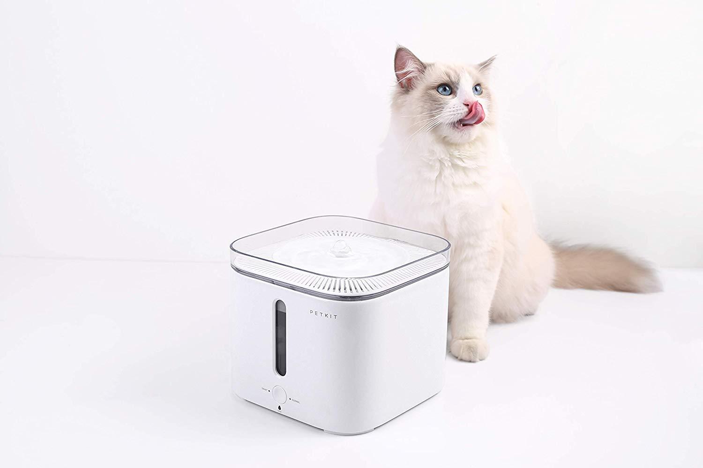猫用自動給水器のおすすめ9選!ケージ用や電源不要タイプも