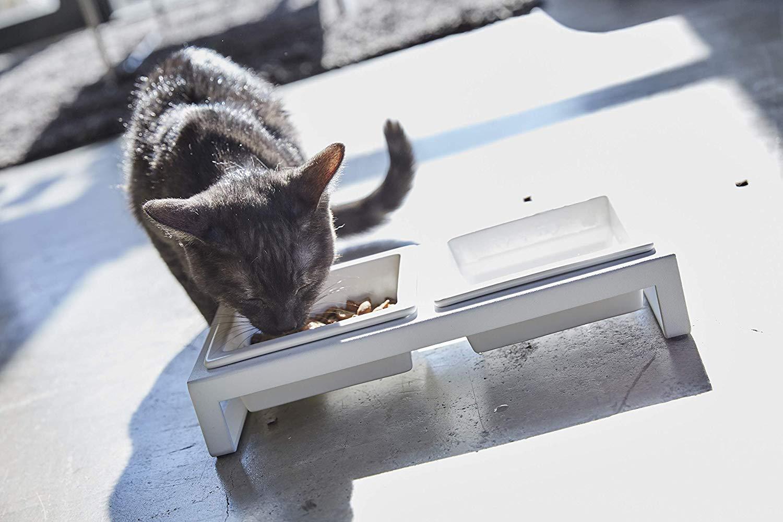 猫用食器のおすすめ6選!脚付きや斜めタイプも
