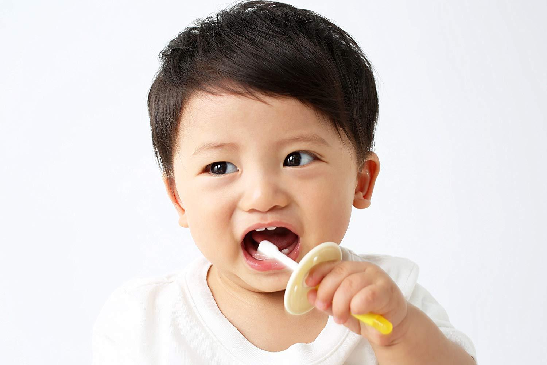 赤ちゃん用の歯ブラシおすすめ12選!360度ヘッドも