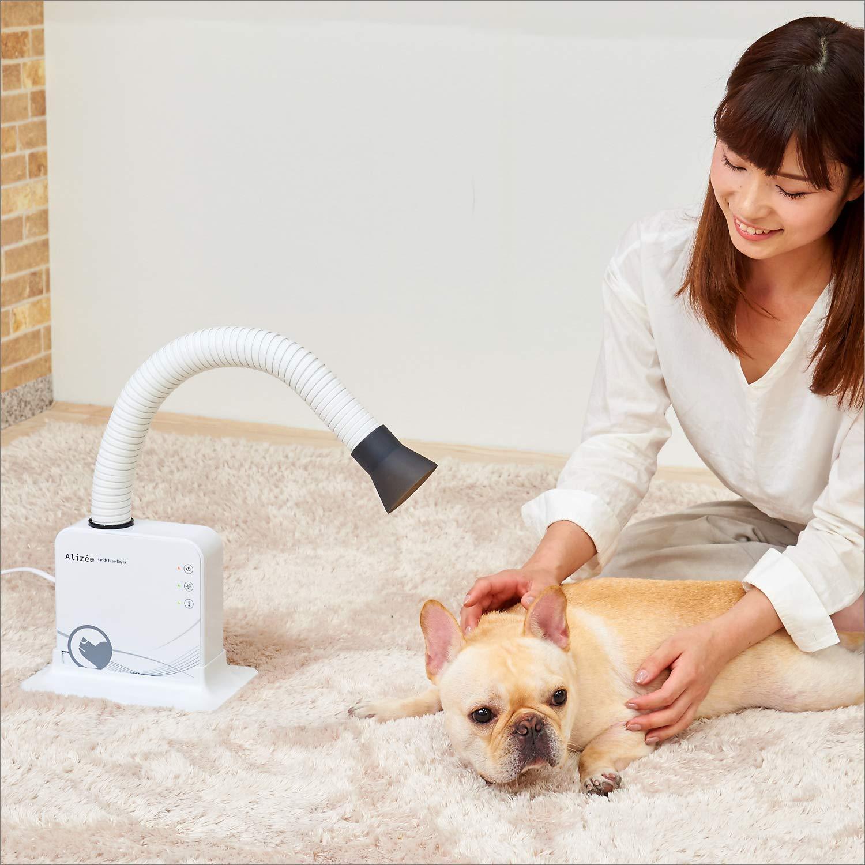 犬用ドライヤーのおすすめ9選!温度調整できるタイプも