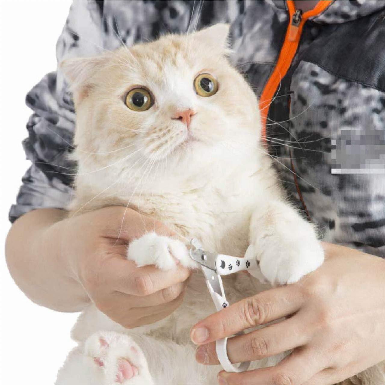 猫用の爪切りおすすめ8選!扱いやすいハサミタイプも