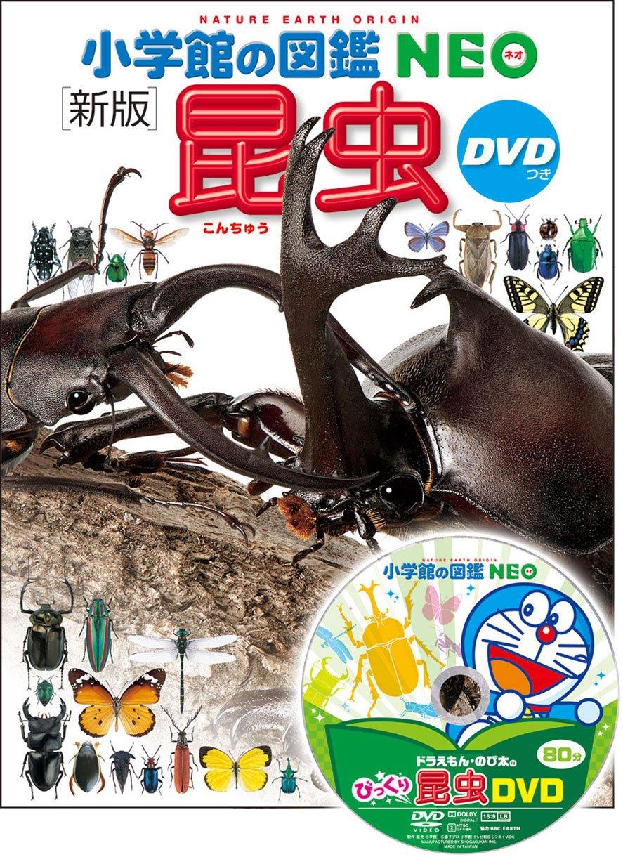 昆虫図鑑のおすすめ25選!子ども向け・大人向けも