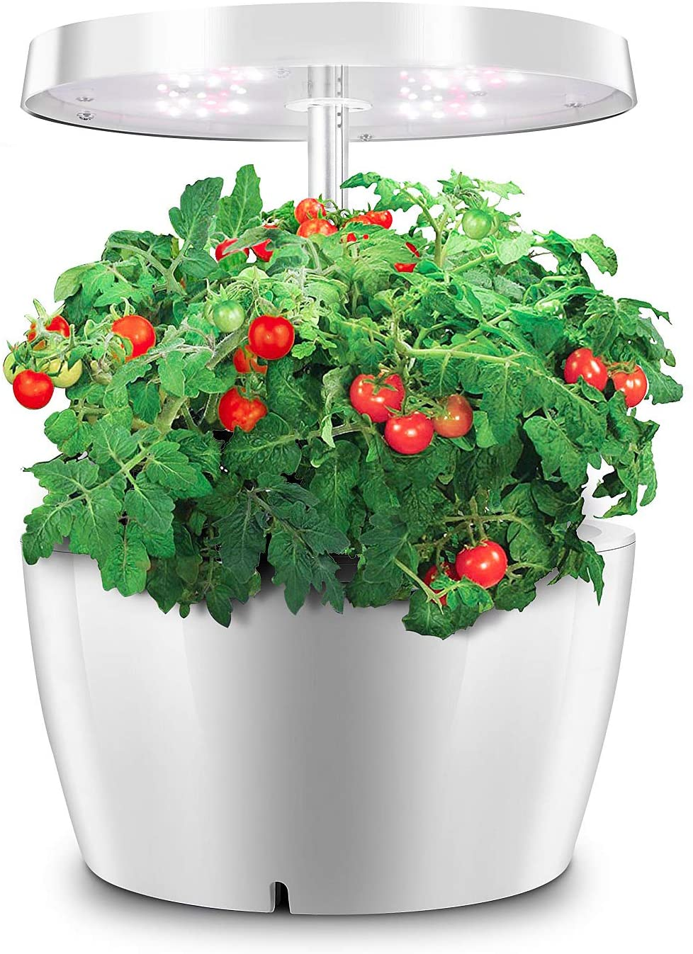 水耕栽培キットのおすすめ16選!ミニトマトが作れるペットボトル型も